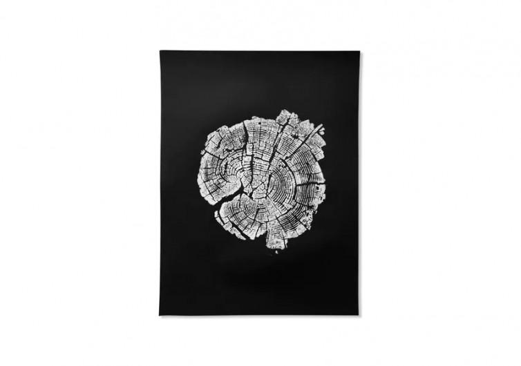 Fallen Tree Prints