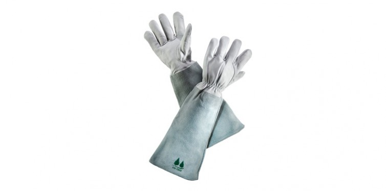 firtree leather gardening gloves