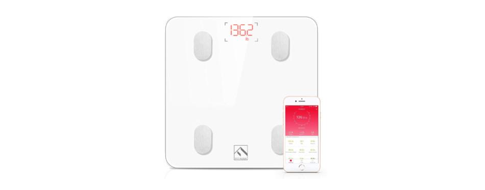 fitindex smart wireless digital bathroom scale