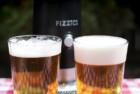 Fizzics Waytap Draft Beer Dispenser