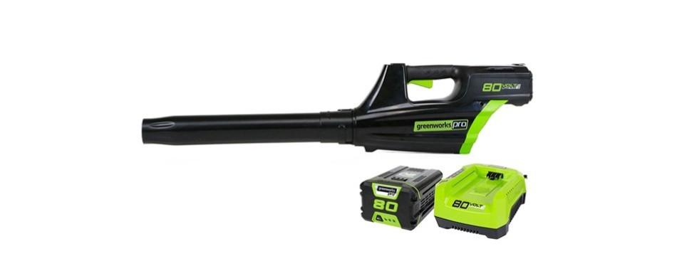greenworks gbl80300 cordless leaf blower