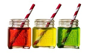 hayley cherie mason jar shot glasses