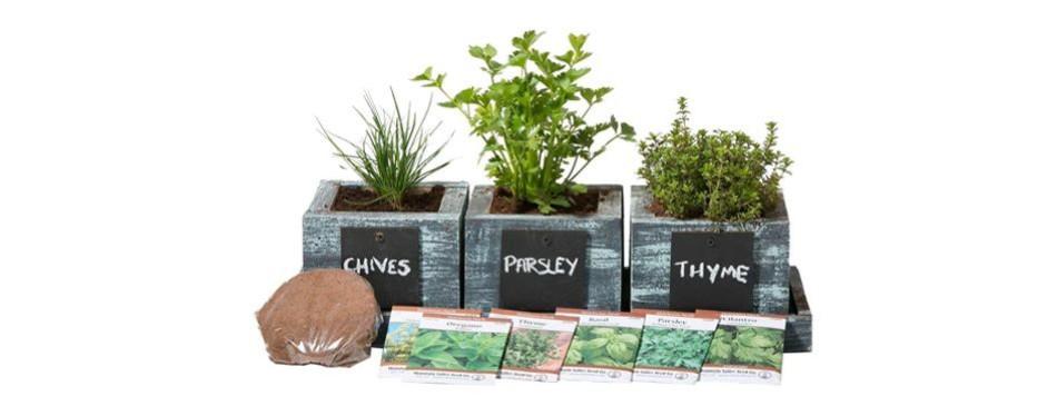herb garden planter by planter pro's