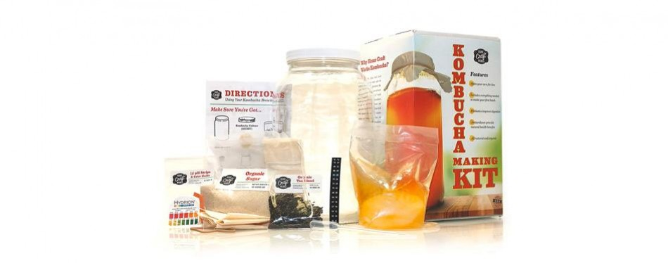 home craft works kombucha starter kit