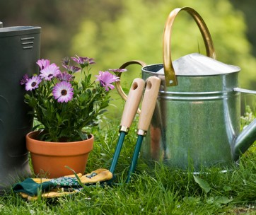 814696c6c6d7 how to garden like a pro