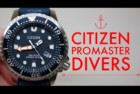 Citizen Men's Promaster Diver Analog Watch