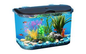 koller products aq15005 - panaview 5-gallon aquarium kit