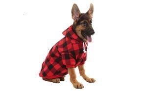 kooltail plaid dog hoodie