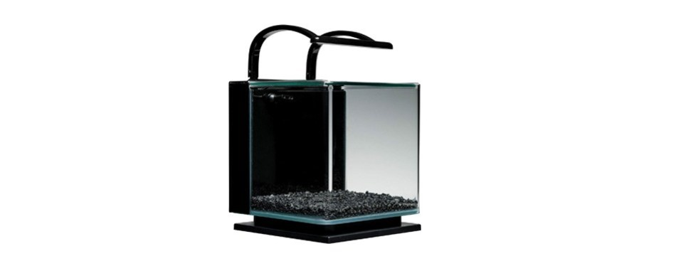 marineland contour glass aquarium kit