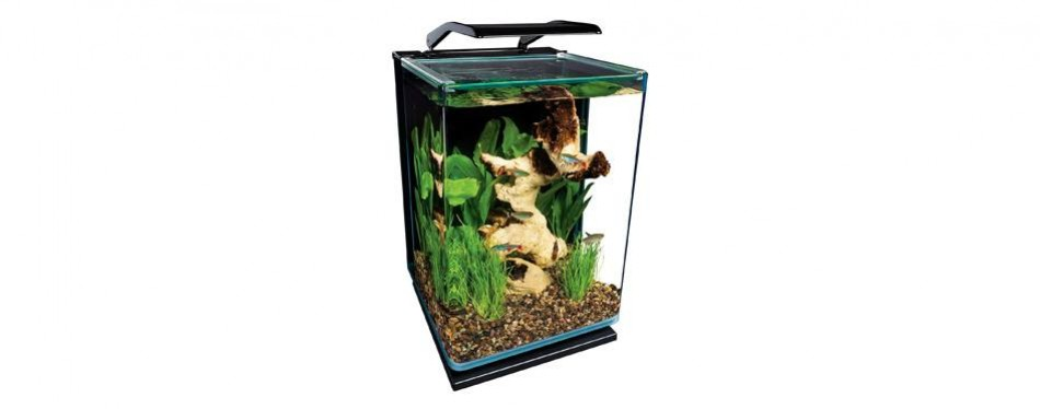 marineland portrait aquarium kit