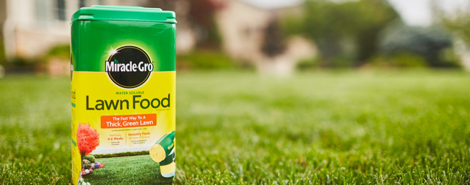 miracle-gro water soluble lawn food