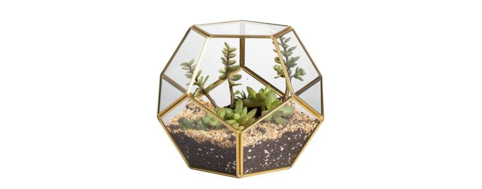 ncyp brass glass geometric terrarium