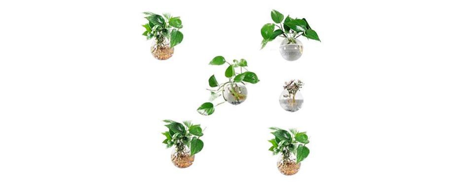 pack of 6 glass planters