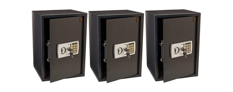 paragon 7775 deluxe home safe