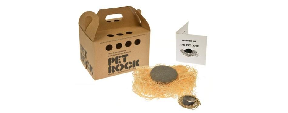 pet rock with walking leash
