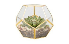 deco glass terrarium