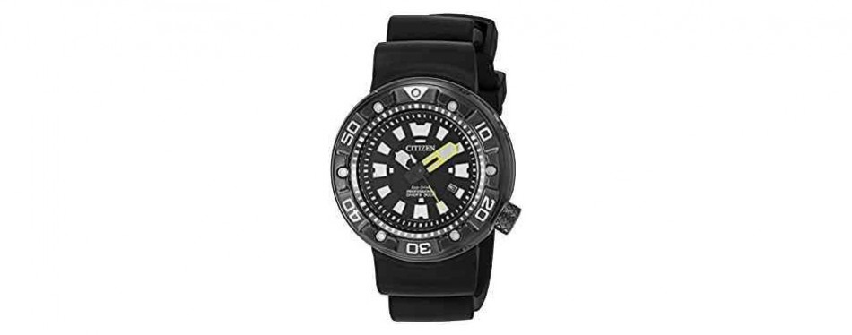 promaster professional diver citizen watch