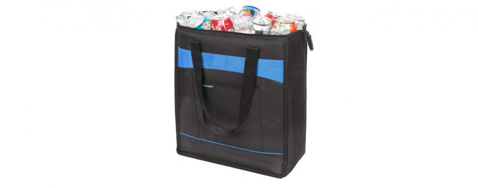 rachael ray chillout thermal insulated food bag