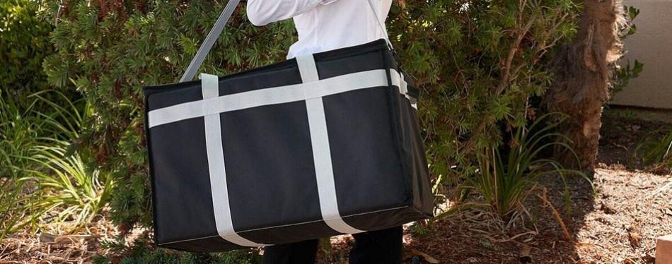risen gear insulated food bag
