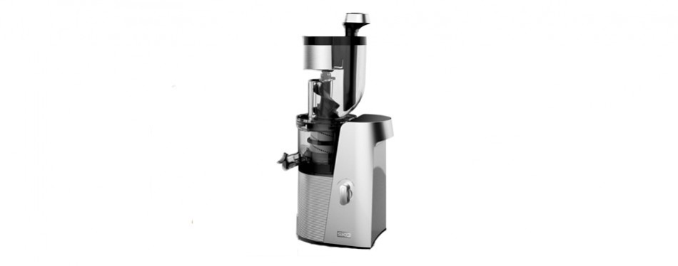 skg cold press juicer