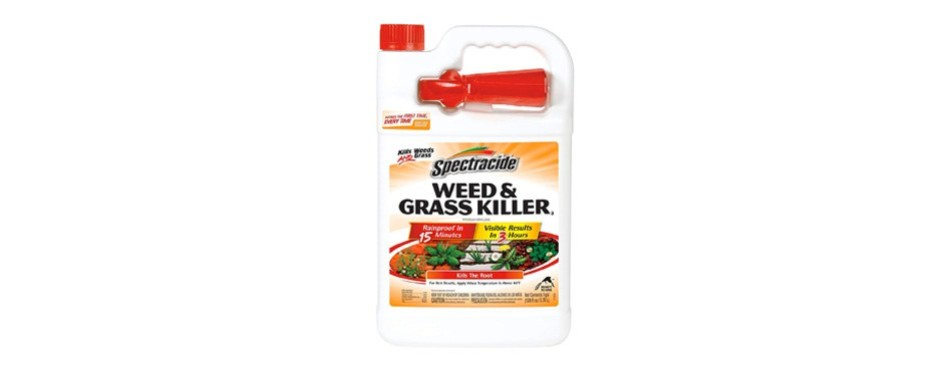 spectracide weed & grass killer2