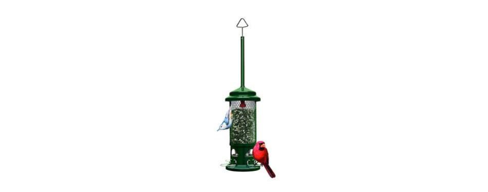 squirrel buster standard squirrel-proof bird feeder