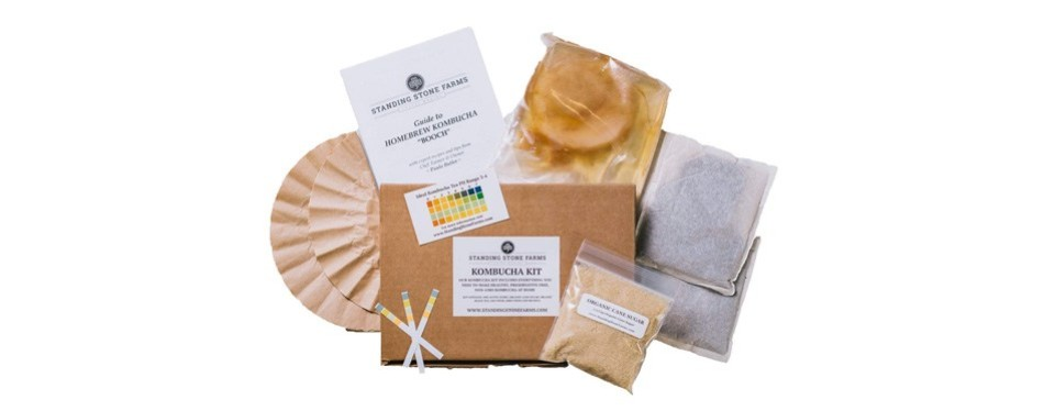 standing stone farms kombucha starter kit