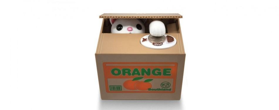 stealing coin cat box