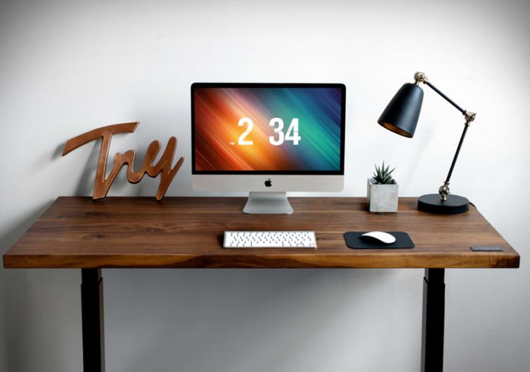 Sway Adjustable Desk