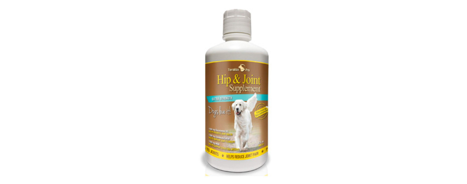 terramax pro best hip and joint supplement for dogs
