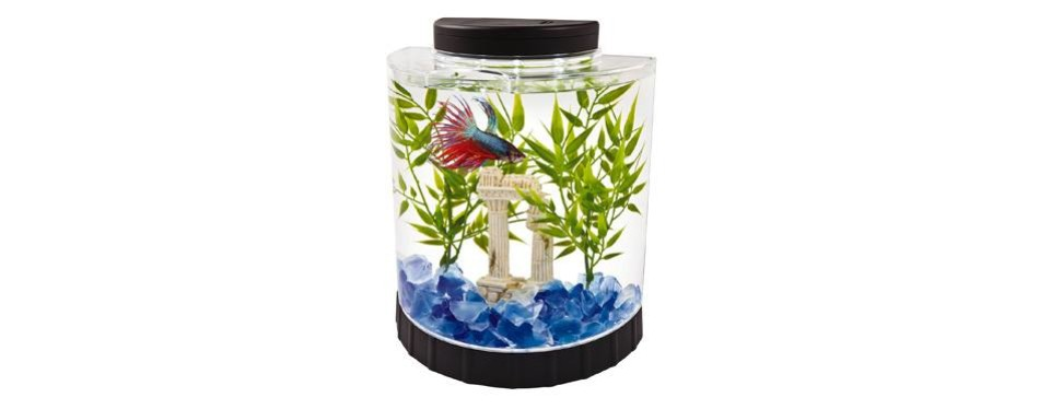 tetra led half moon betta aquarium