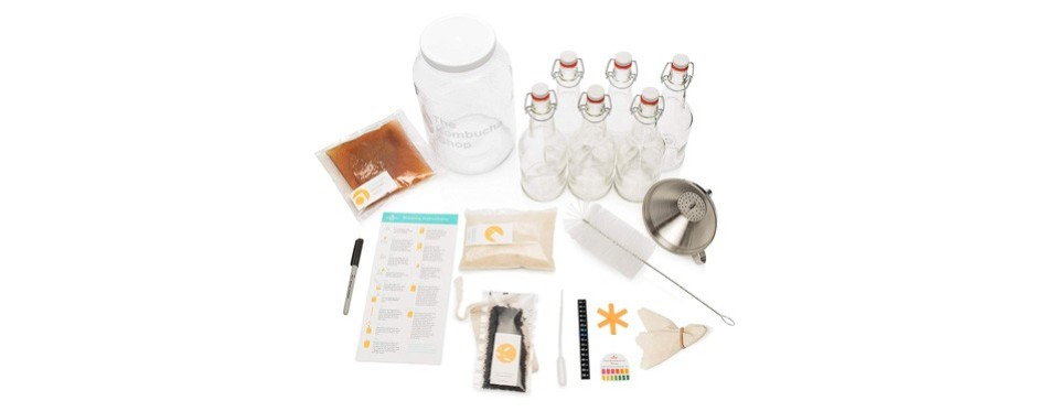 the kombucha shop deluxe kombucha starter kit