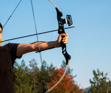 the ultimate guide to bow types