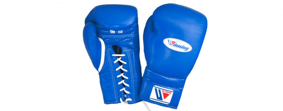 training boxing gloves, by winning