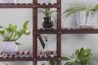 ufine carbonized wood 6 tier plant stand shelf