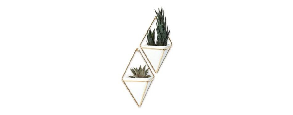 umbra trigg hanging planter vase & geometric wall decor container