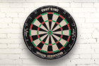 viper shot king regulation bristle steel tip dartboard set